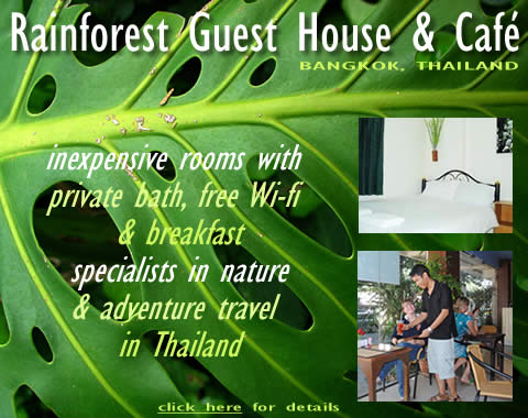 click here for RAINFOREST GUEST HOUSE & CAFE